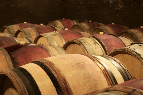 La Bourgogne, des tonneaux à la dégustation!